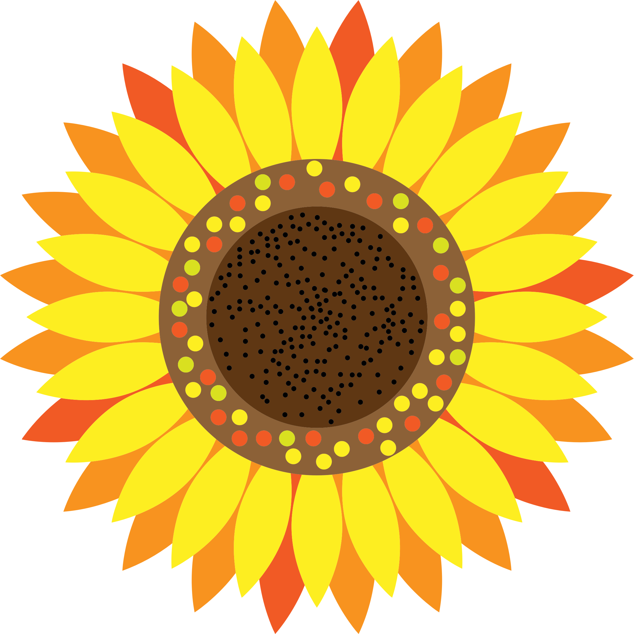 Sunflower Clipart Transparent