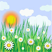 Sunny Day · sunny day