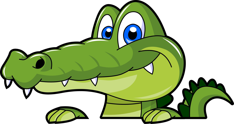 Swamp alligator cartoon .