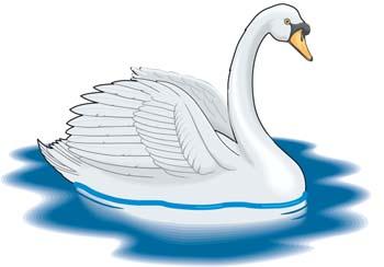 Swan clip art vector swan graphics image