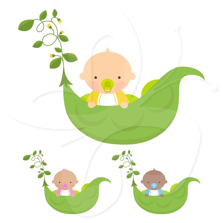 Sweet Pea Baby Shower clipart clip art set from Creative Clip Art  Collection. Unique and