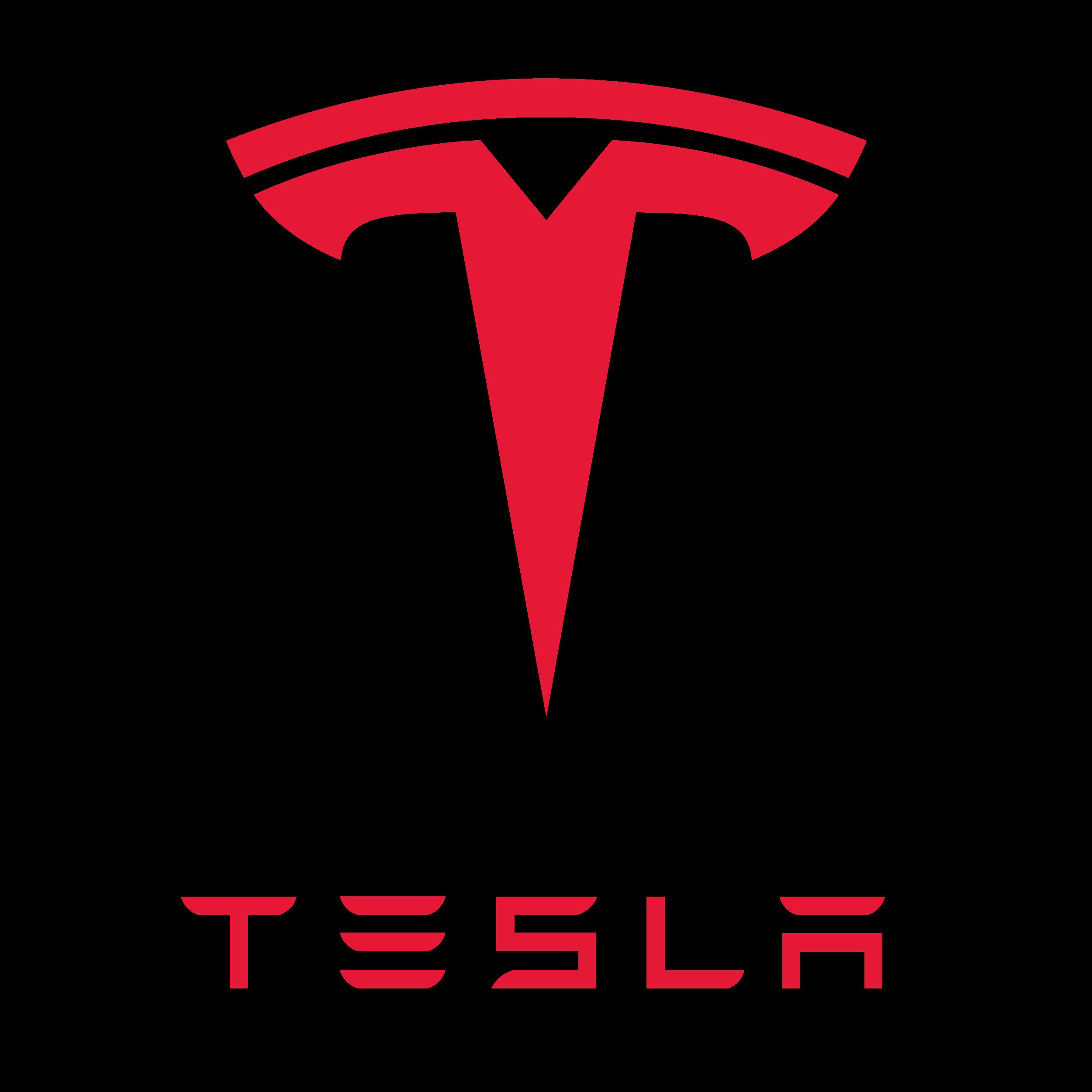 Car Logo Tesla