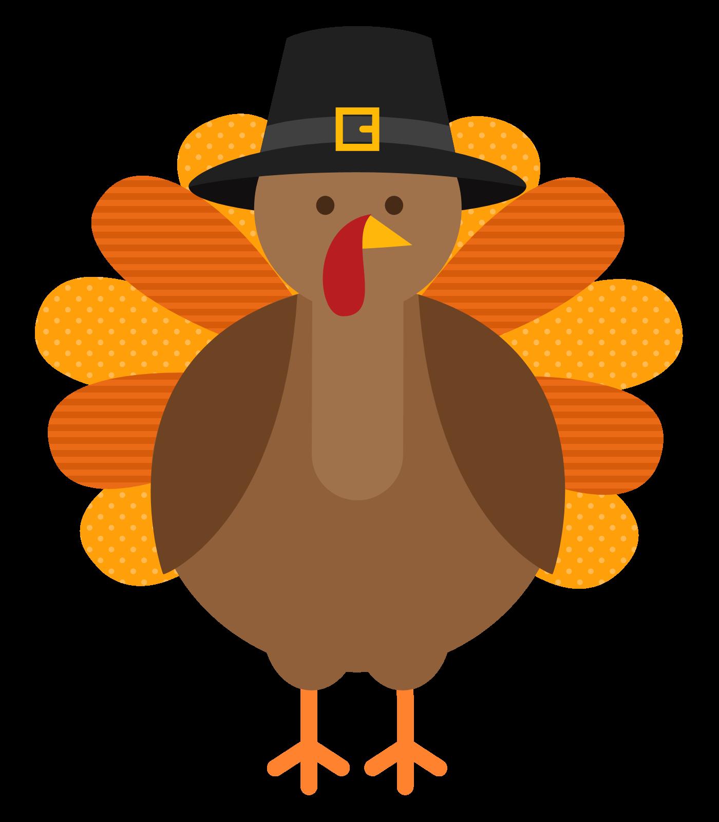 Thanksgiving Turkey Photos .