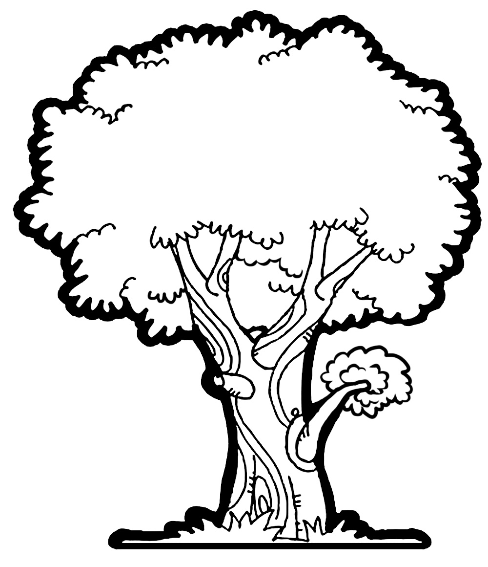 That Others image has been removed at the request of its copyright owner. Tree Clipart Black And White