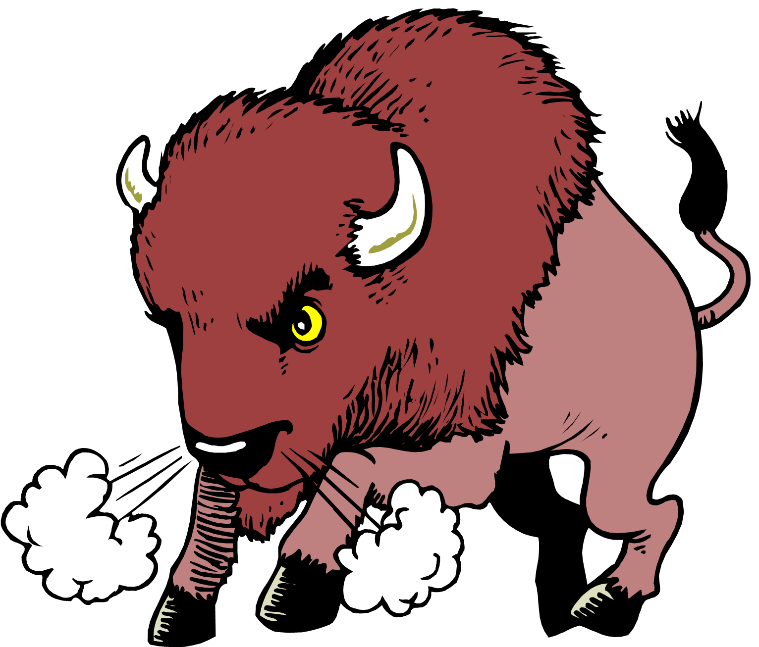 The Buffalo Say To His Son When He Went Away On A Trip A Bison Q