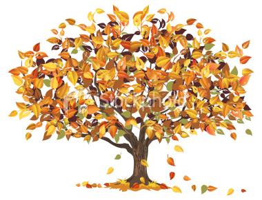 The Wisdom Of Autumn Trees .