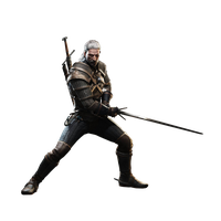 The Witcher File PNG Image