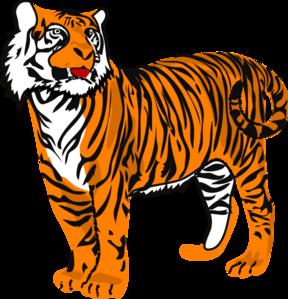 Tiger clip art - vector clip .