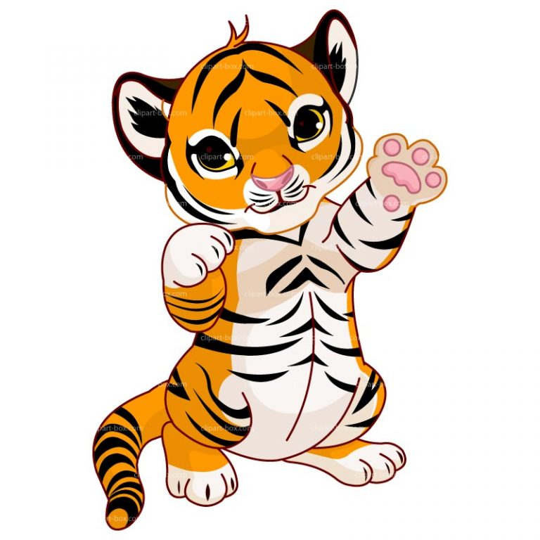 tiger cartoon clipart standing baby tiger clipart