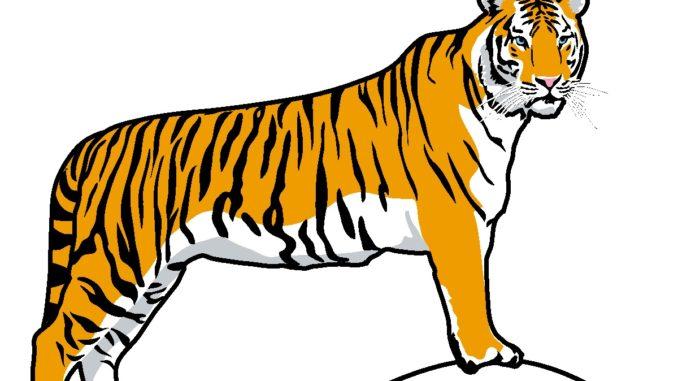 tiger woods cartoon images