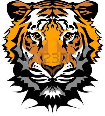 tiger: Mascot Vector Image of a Tiger Head with Whiskers Illustration