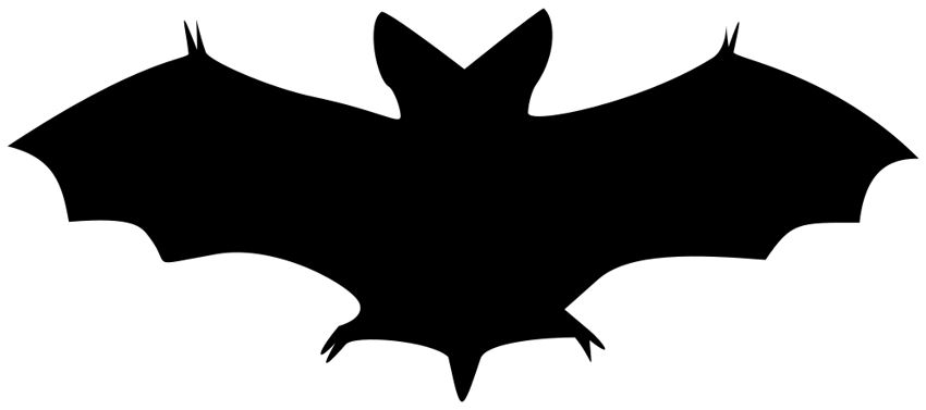 Todayu0026#39;s image is a wonderful silhouette of a bat! This one is not from my collection, but it is in the public domain and I think itu0026#39;s such a useful image ...