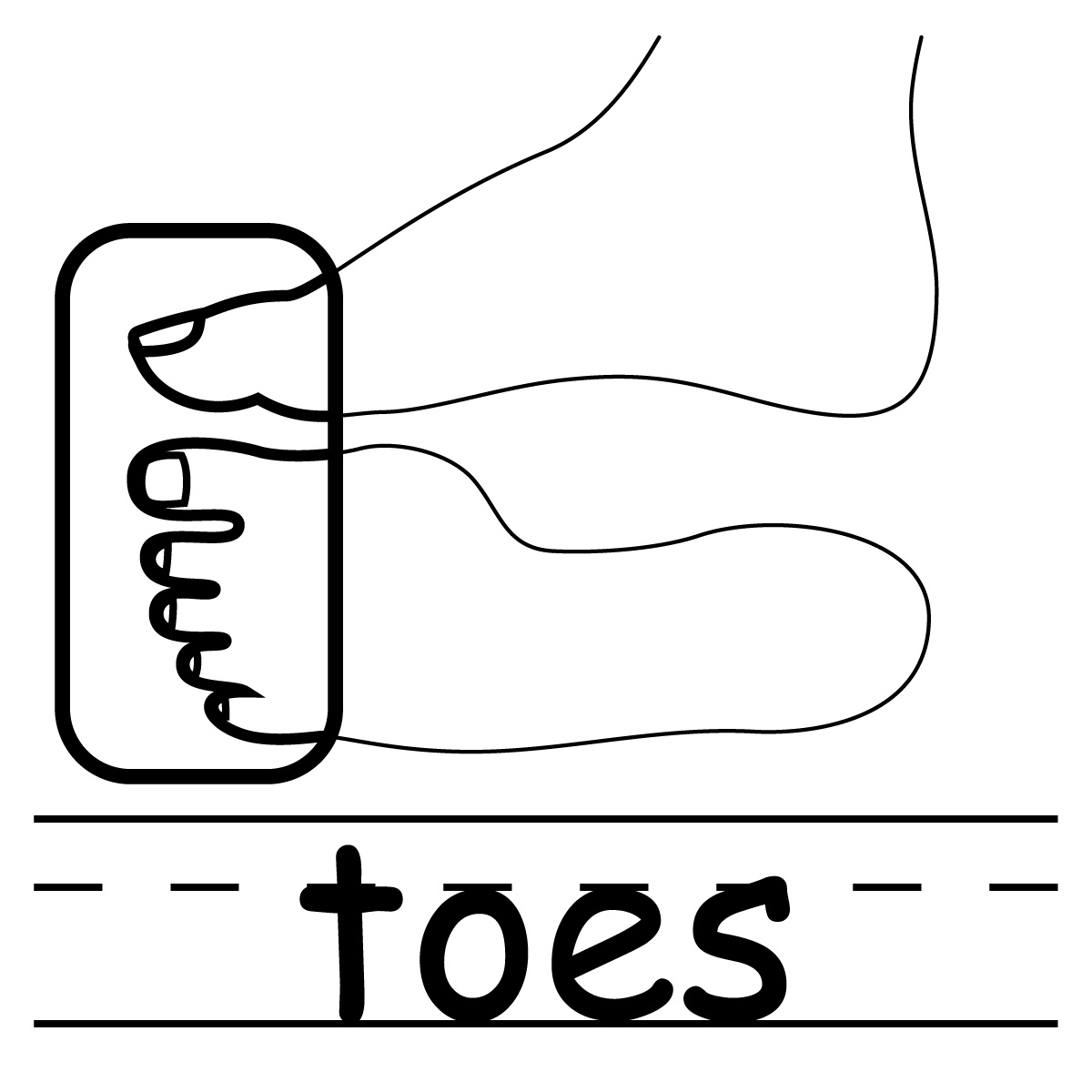 Toe Clip Art Free