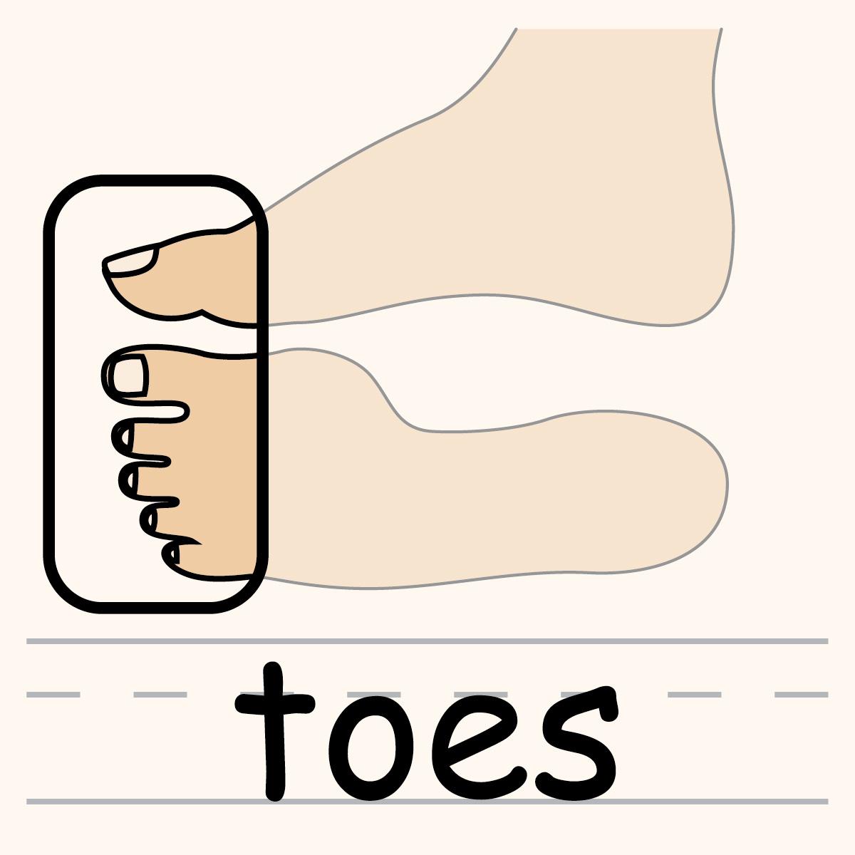 Toes Clip Art