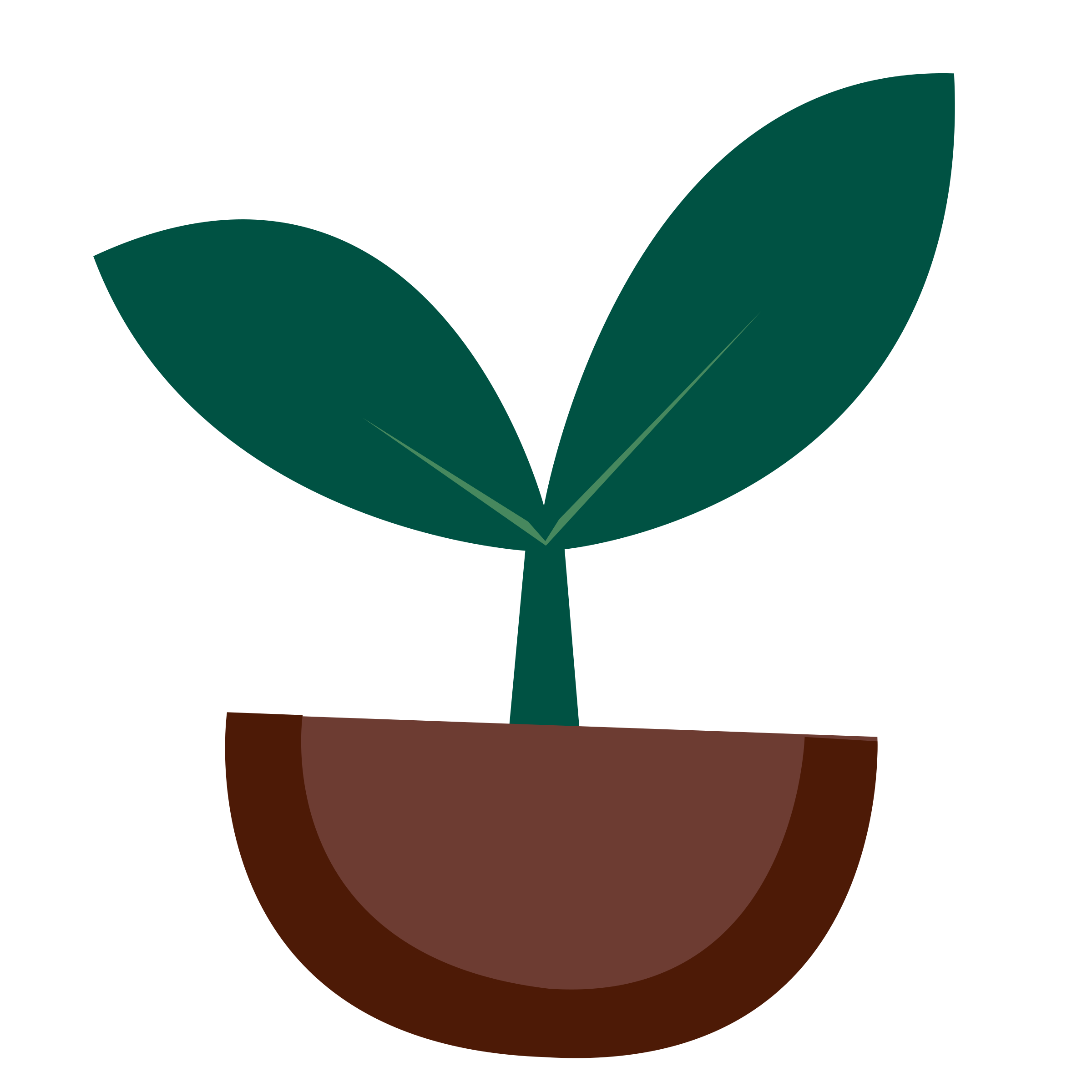 Tomato Plant Clipart. BIG IMAGE (PNG)