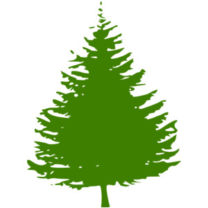 ... Toopika Search - Image - free pine tree clip art - ClipArt Best .