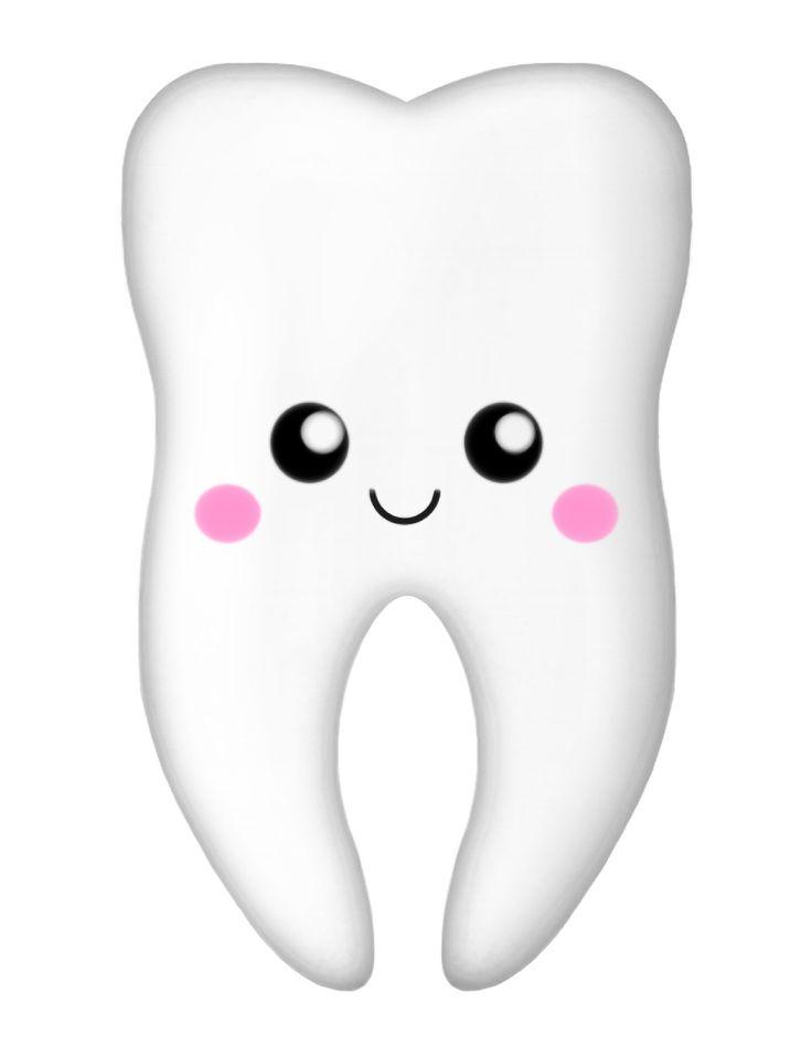 tooth clipart png - Recherche Google