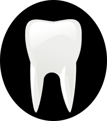 Tooth Molar Clip Art Free Vector In Open Office Drawing Svg Svg