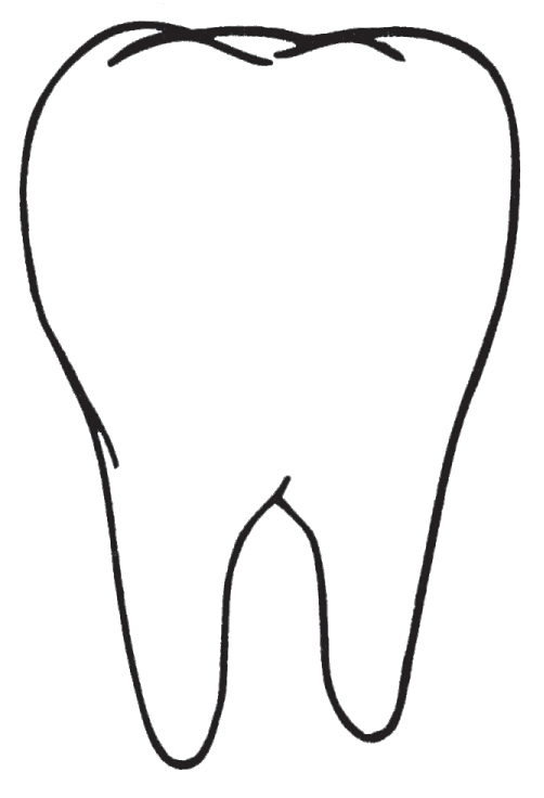 Tooth Outline Clipart