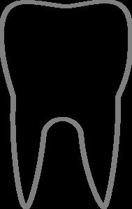 Transparent Tooth Clip Art At Clker Com Vector Clip Art Online