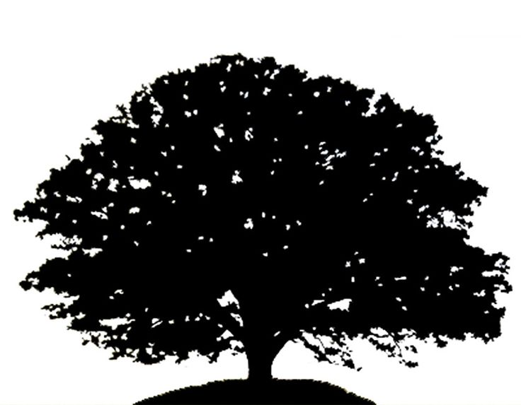 Tree clip art oak tree clip .