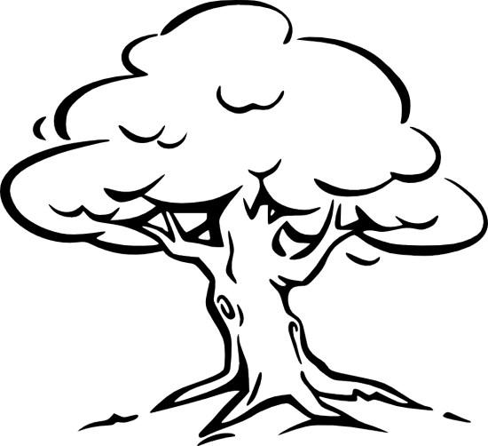 Tree Clip Art Outline Home Design Gallery