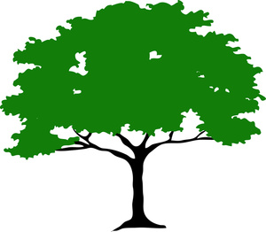 ... Tree Clipart - Free Clipart Images ...