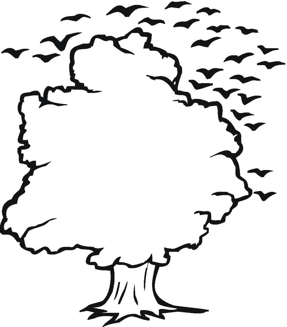 ... Tree clipart outlines ...