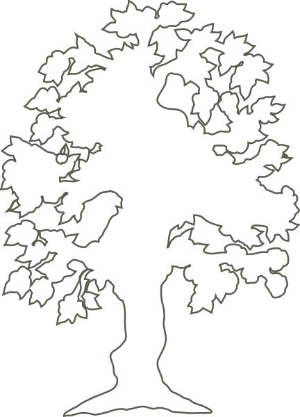 Tree Of Life Outline | Simple Flowering Tree Outline clip art