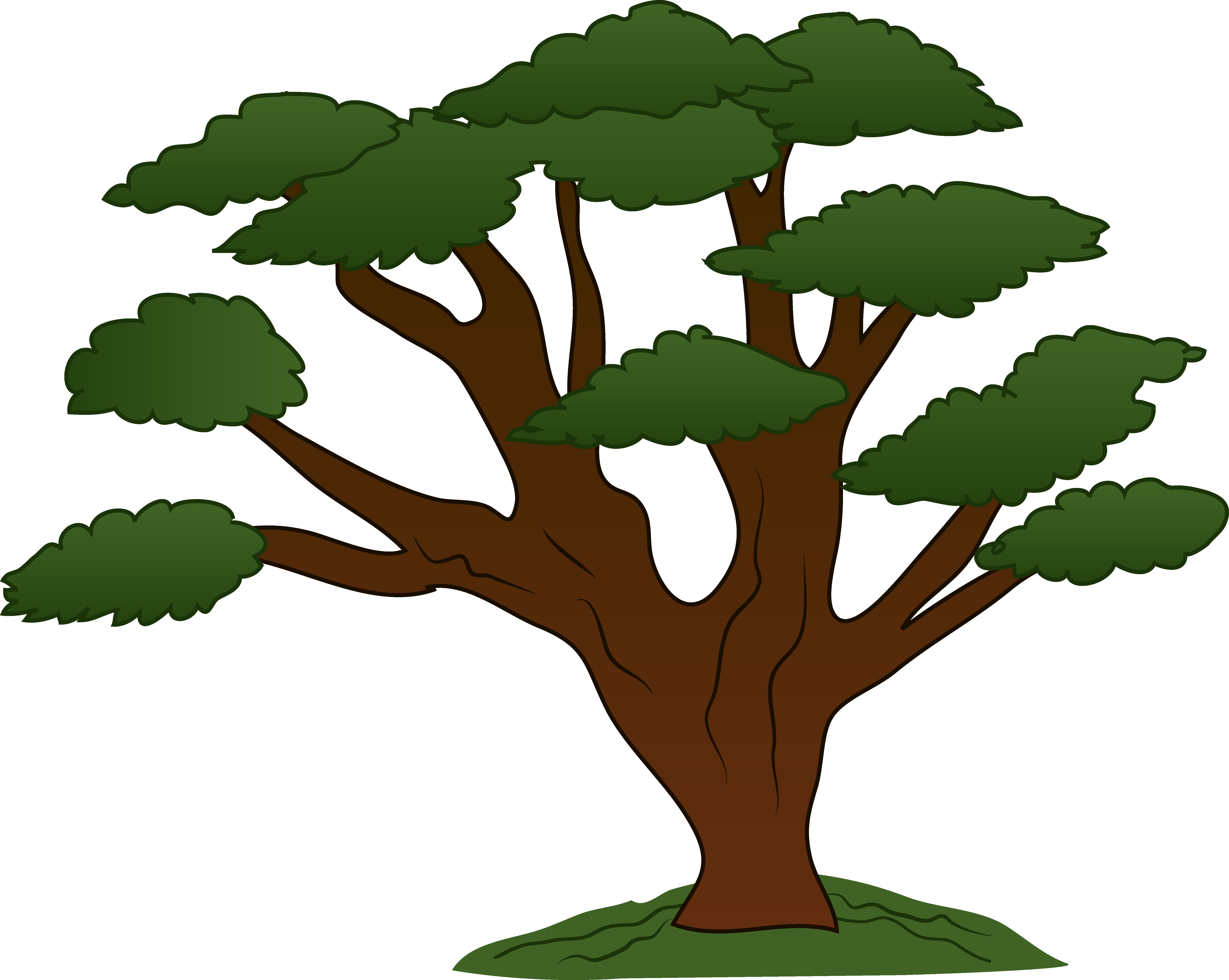 Trees family tree clipart free clipart images cliparting