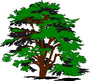 Trees simple tree clip art at clker vector clip art