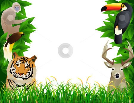 Tropical Jungle Stock Vector Clipart Vector Illustration Wild Animal