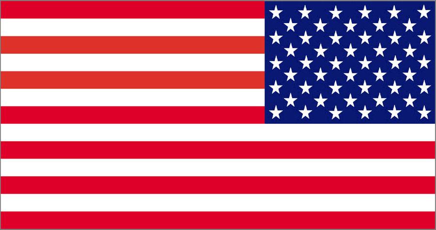 Us Flag Graphic