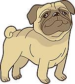 Vector Funny Cartoon Pug Stock Illustration