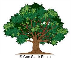 ... Vector oak tree - Vector illustration of old green oak tree Vector oak tree Clip Artby ...