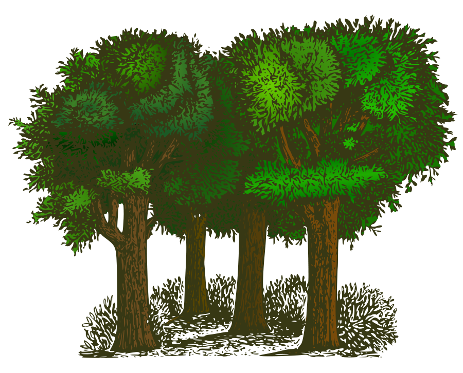 Vector Trees Free   Free Download Clip Art   Free Clip Art   on .