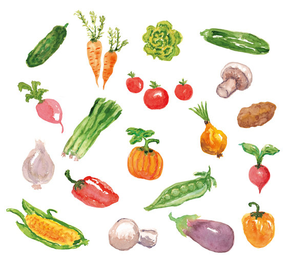 19 Watercolor Cliparts, Vegetables Clipart, Watercolor Vegetables Clip Art,  Printable Watercolor Vegetables Art, Handpainted Clipart from GarlikArt on  Etsy hdclipartall.com