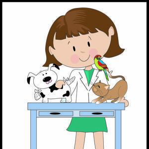 Veterinary Technology Veterinary Assisting And Veterinary Medicine