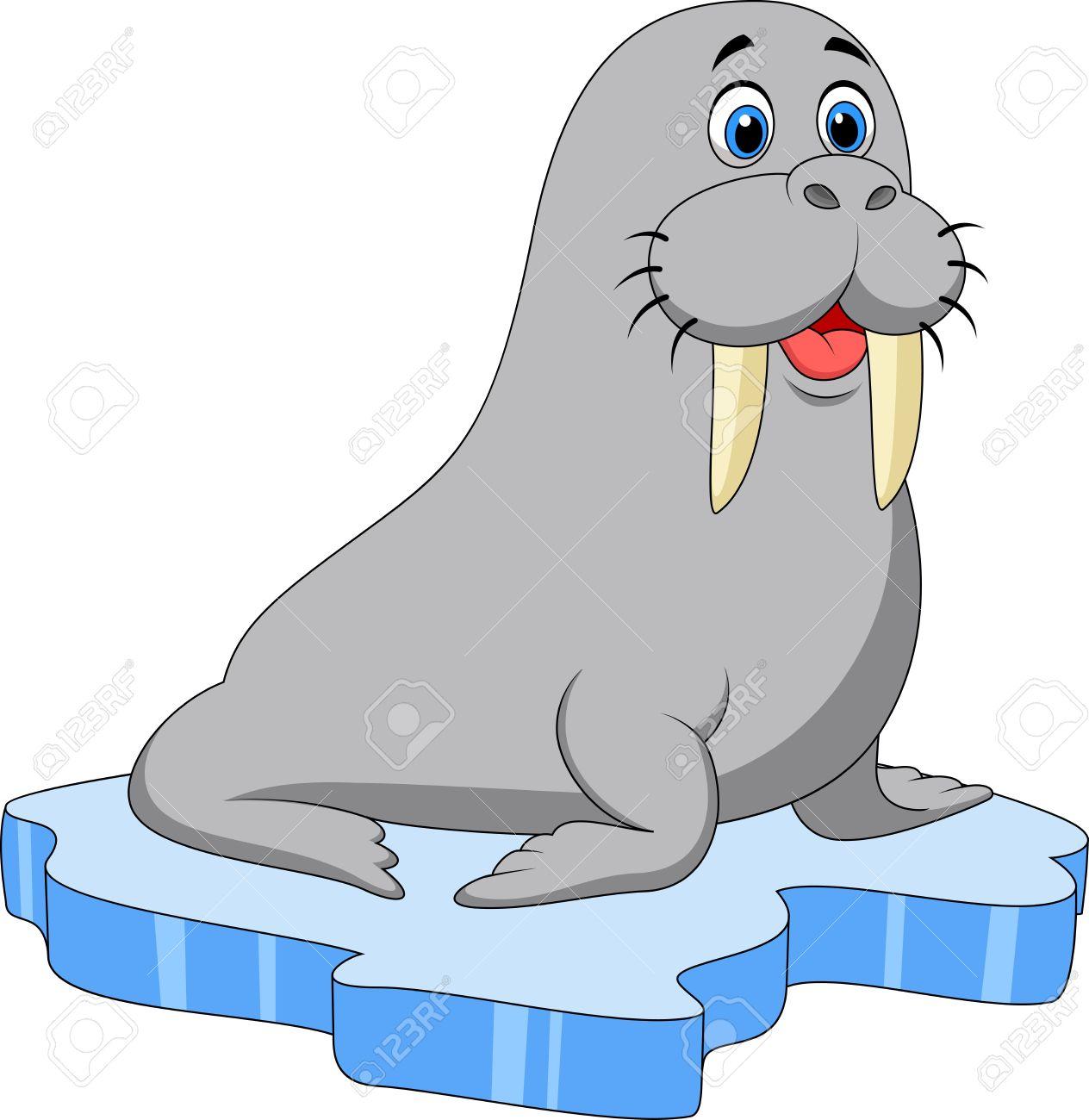 Grey clipart walrus #4 - Walrus Clipart