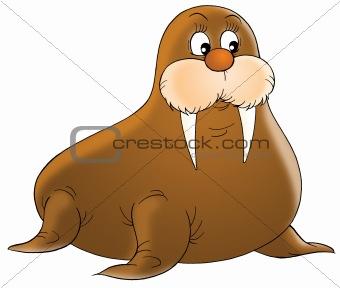 walrus clipart