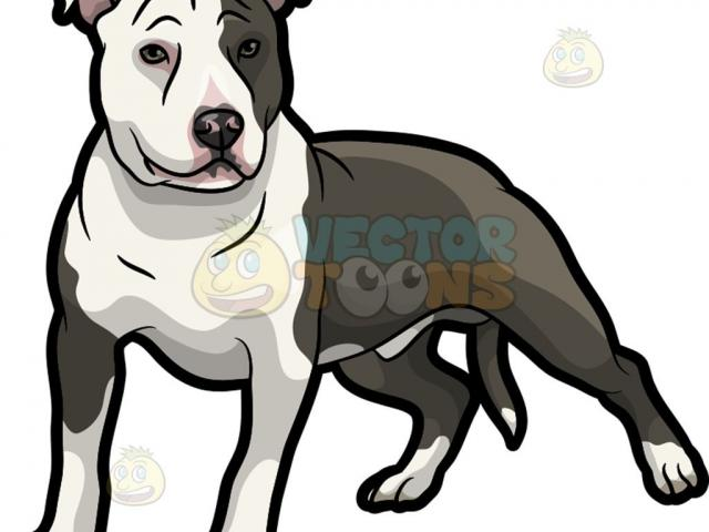 Watch Dogs Clipart brave dog