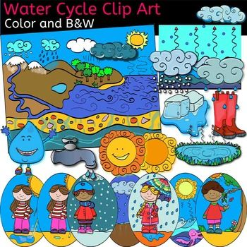 Water Cycle clip art set includes images for : u2022Clouds u2022Evaporation1 u2022Evaporation2 u2022
