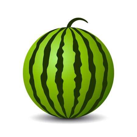 Round watermelon vector icon