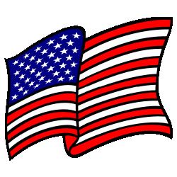 Waving American Flag Solid