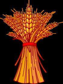 Wheat Clipart Best