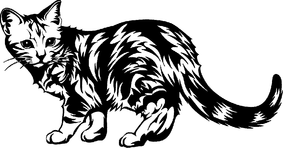 white 3 Cat clipart black .