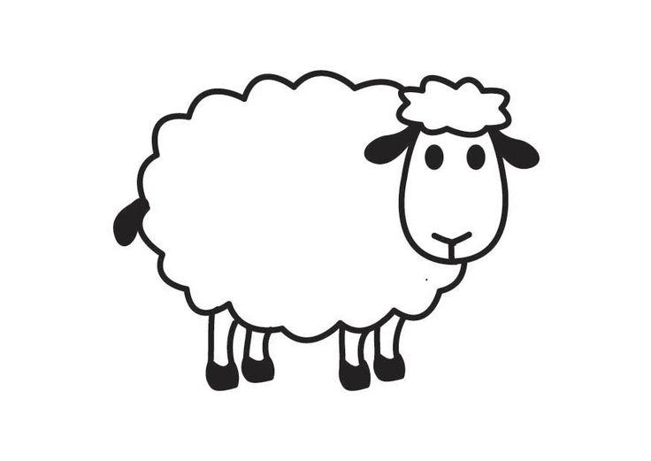White sheep clipart free .