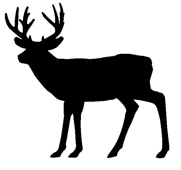 whitetail clipart | deer .