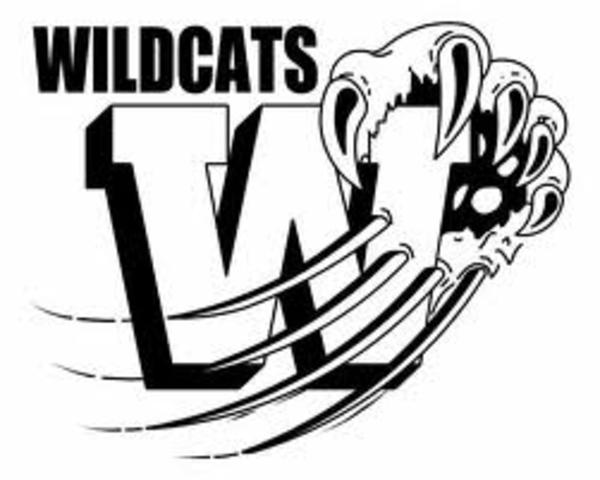 Wildcat Image