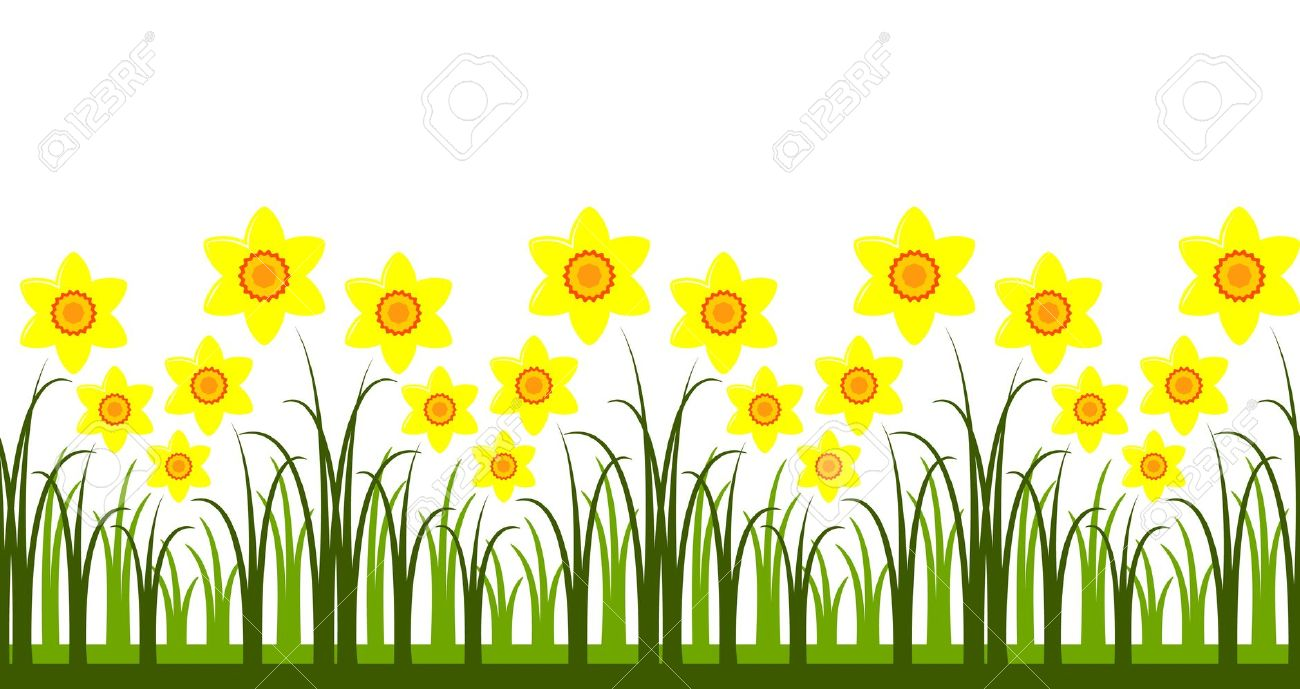 with Daffodils PNG Clipart. daffodil: seamless daffodils .